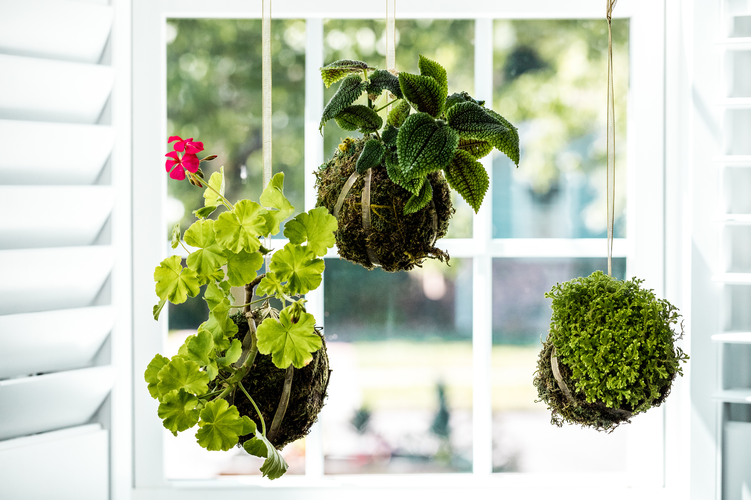 Once the moss is held securely by twine, add an extra layer of twine or decorative ribbon that can be used for hanging.