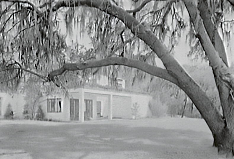 """Millionaire's Playground: Victor and Marjorie Morawetz were among a fortunate group of wealthy Northerners who discovered the South Carolina Lowcountry in the 1920s and 1930s as a perfect place for winter homes and/or hunting retreats. Like the Morawetzes' restoration of Fenwick Hall, the monies brought by members of this """"second Northern invasion"""" saved many of the area's historic properties, which were then in imminent danger of destruction by neglect. Many still flourish from the generosity of their benefactors, and some, including the former Mepkin Plantation (pictured here) are open to the public."""