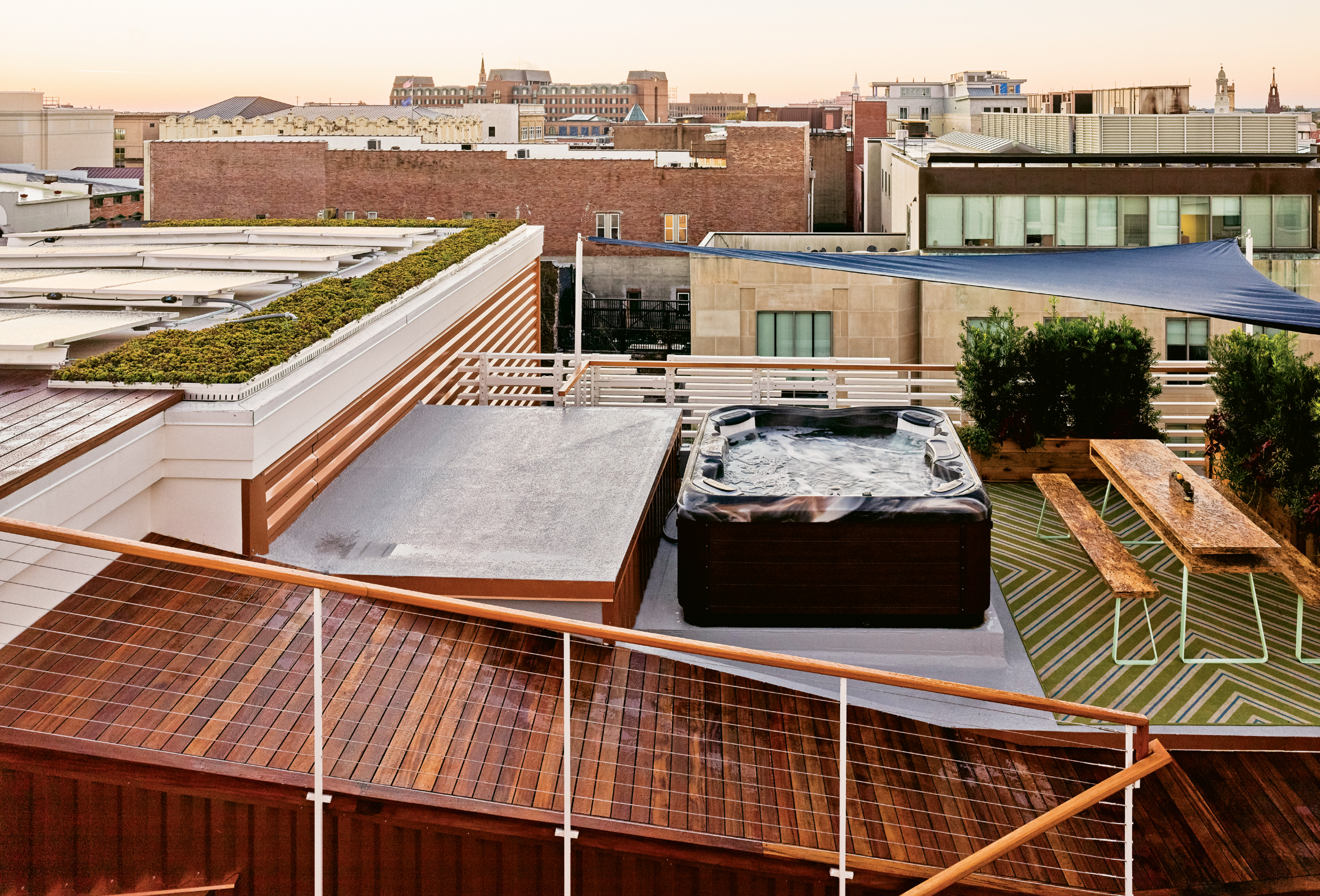 Podocarpus hedges add visual interest and provide some privacy to the rooftop living areas.