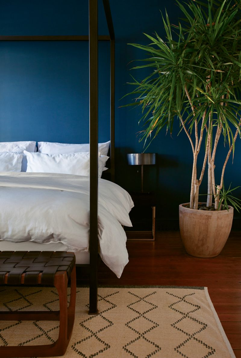Cool Quarters: The deep marine-blue accent wall in the master bedroom
