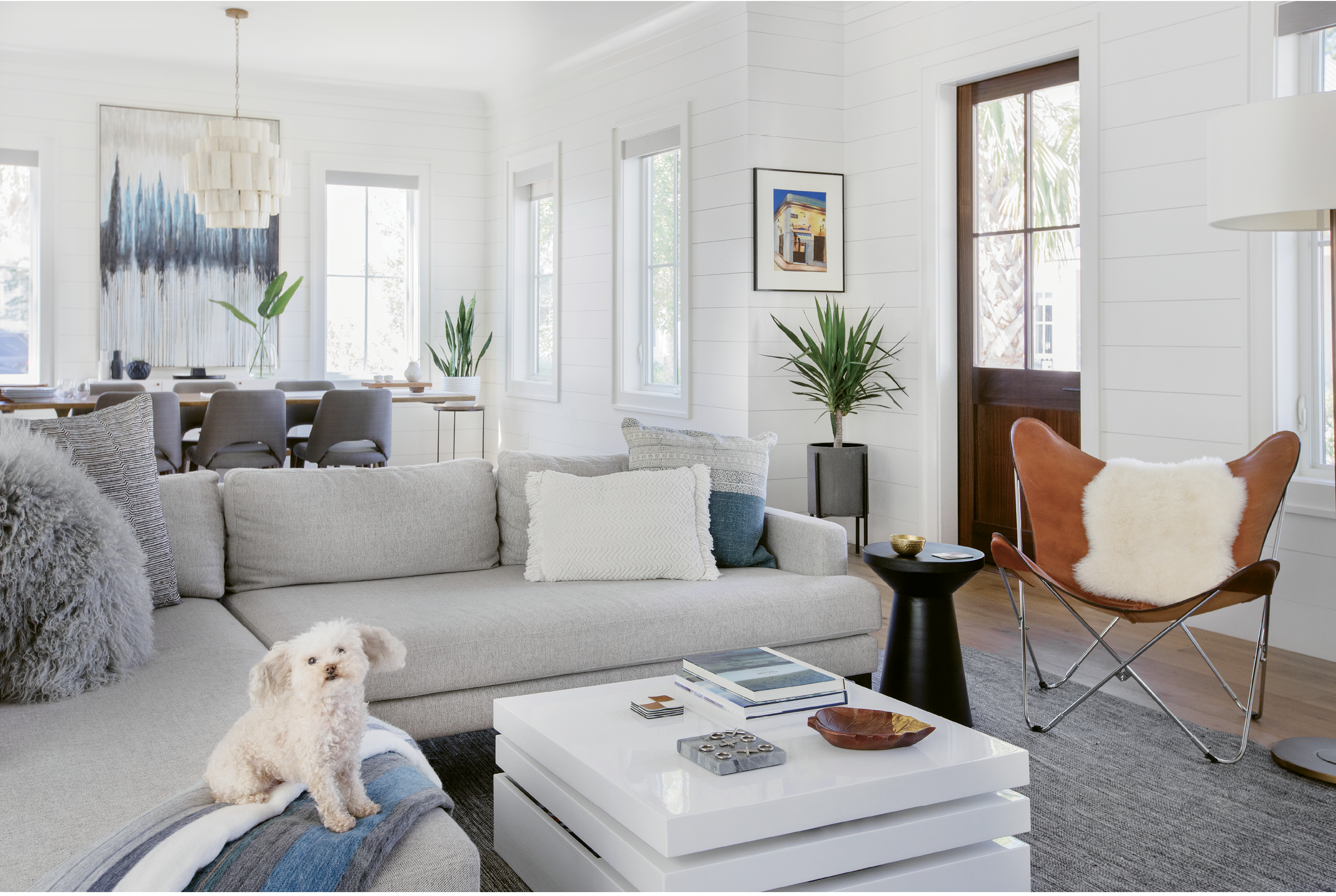"""Wide-Open Spaces: Shiplap walls painted in Benjamin Moore's """"White Dove,"""" oak floors, and reclaimed beams set the stage for the open living area, including a cozy sectional sofa from West Elm where Mia the Maltipoo relaxes among pillows from Lyndon Leigh."""