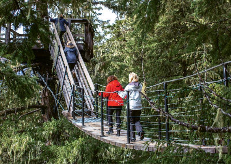 Ziptrek Ecotours