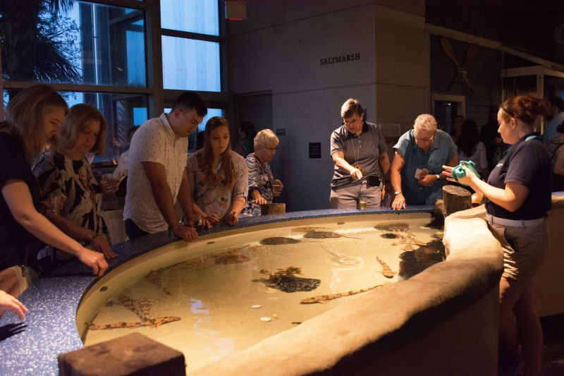 The touch tank offered guests an up-close-and-personal encounter with some of the aquarium's critters.